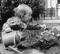Debbie Davitt aged 2 - the budding gardener